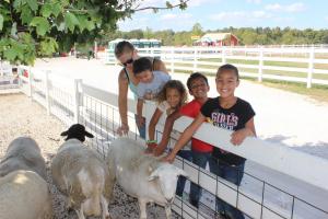 Easter at the Farm @ Rutledge-Wilson Farm Park   Springfield   Missouri   United States